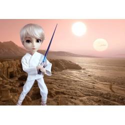 Luke Skywalker (Les Mondes d'Edena)